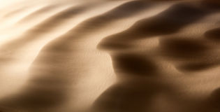 Tempête de sable dans le désert Photographie stock libre de droits