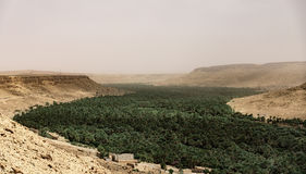 Tempête de sable dans le désert du Sahara Photographie stock libre de droits