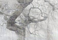 Tempête soudaine de neige Photographie stock libre de droits