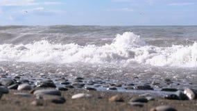 Tempête sur la mer Vue inférieure du rivage pierreux Les vagues énormes se brisent sur la plage banque de vidéos