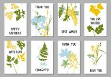 Tempalte με τα φύλλα και τις σκιαγραφίες φυτών Στοκ εικόνα με δικαίωμα ελεύθερης χρήσης