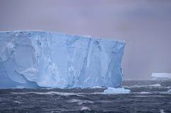 Tempanos in the Antarctic peninsula. royalty free stock image