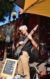 Tempe Festival av konsterna: Bob Culbertson en Chapman Stick Musician royaltyfri fotografi