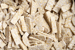Tempeh Royalty Free Stock Photography