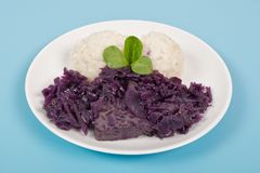 Tempeh with red cabbage and sorghum on a blue. Background royalty free stock photos