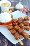 Tempeh satay with peanut sauce. Tempeh skewers / Tempe satay with peanut sauce and rice, Indonesian cuisine Stock Photography