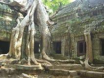 Tempel Angkor Wat lizenzfreies stockbild