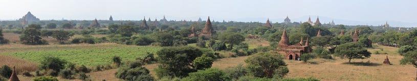 Tempel av Bagan i Myanmar Royaltyfria Foton