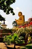 Tempel av Buddha på Sri Lanka (Ceylon) Royaltyfri Fotografi