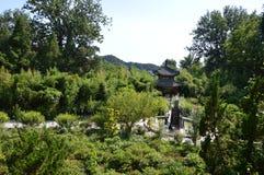 Tempel av den Aestheic trädgården Arkivbild