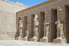 Tempel av Hatshepsut, Egypten Arkivfoto