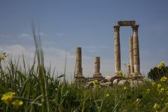 Tempel av Hercules Arkivbild