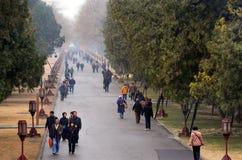 Tempel av himmel i Beijing Kina Royaltyfri Bild