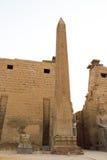Tempel av Luxor Arkivbilder