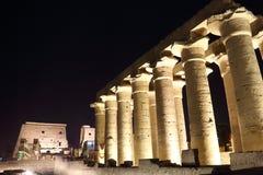 Tempel av Luxor på natten Arkivbilder