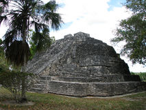 Tempel av Maya Royaltyfria Foton