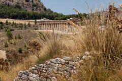 Tempel av Segesta Arkivbild