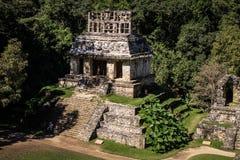 Tempel av solen, Palenque, Chiapas, Mexico Royaltyfria Foton