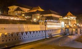 Tempel av tanden royaltyfria bilder