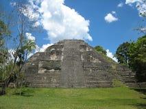 Tempel av Tikal, Guatemala Royaltyfri Fotografi