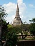 Tempel - Ayutthaya stock afbeelding