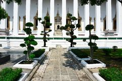Tempel BANGKOKS, THAILAND, Bangkok- - Thailand-Buddhismusreligion lizenzfreie stockfotografie