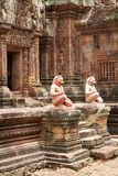 Tempel Banteay Srei in Angkor Stock Image
