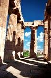 Tempel bei Selinunte Stockbild