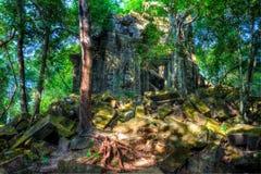 Tempel Beng Mealea. Cambodja Arkivfoto
