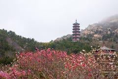 Tempel in de bergen stock afbeelding