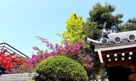 Tempel-Detail, Okinawa Japan Stockfotos