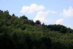 Tempel die door pijnboomboom wordt omringd op berg Royalty-vrije Stock Foto