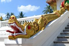 Tempel Dragon Luang Prabang Laos Royalty-vrije Stock Foto's