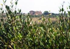 Tempel E på Selinunte i Sicilien är en grekisk tempel av den doric nollan Arkivfoton