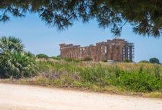 Tempel E på Selinunte i Sicilien är en grekisk tempel av den doric nollan Arkivbilder