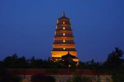 Tempel en stupa Stock Foto's
