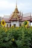 Tempel en Zonnebloem met hemelachtergrond Royalty-vrije Stock Fotografie