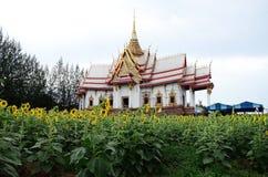 Tempel en Zonnebloem met hemelachtergrond Stock Foto