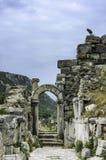 Tempel Ephesus Royaltyfria Foton