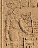 tempel för 12 philae Arkivfoto