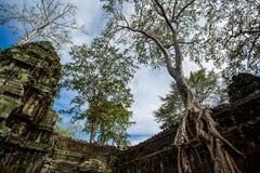tempel för cambodia prohmta Arkivfoto