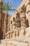 tempel för egypt karnakstatyer Royaltyfri Foto