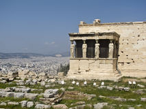tempel för erechtheion för acropolisathens caryatids Arkivbilder
