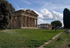 tempel för paestum iii Royaltyfri Bild