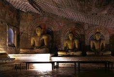 tempel för sri för grottadambullalanka Royaltyfri Fotografi