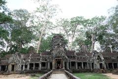Tempel för Ta Prohm Arkivbild
