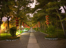 tempel för sun för park för natt för beijing porslinlyktor rött Royaltyfri Bild