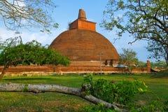 Tempel i Anuradhapura, Sri Lanka Mahatupa stora Dagoba i Anuradhapura på solnedgången, Unesco, Sri Lanka, Asien Jetavanaramaya da Royaltyfria Bilder