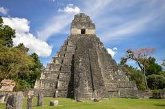 Tempel I av den arkeologiska platsen för Maya av Tikal Arkivfoton