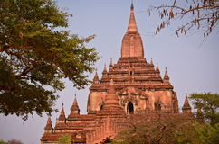 Tempel i Bagan Myanmar Royaltyfri Foto